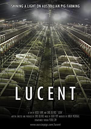 watch Lucent full movie 720