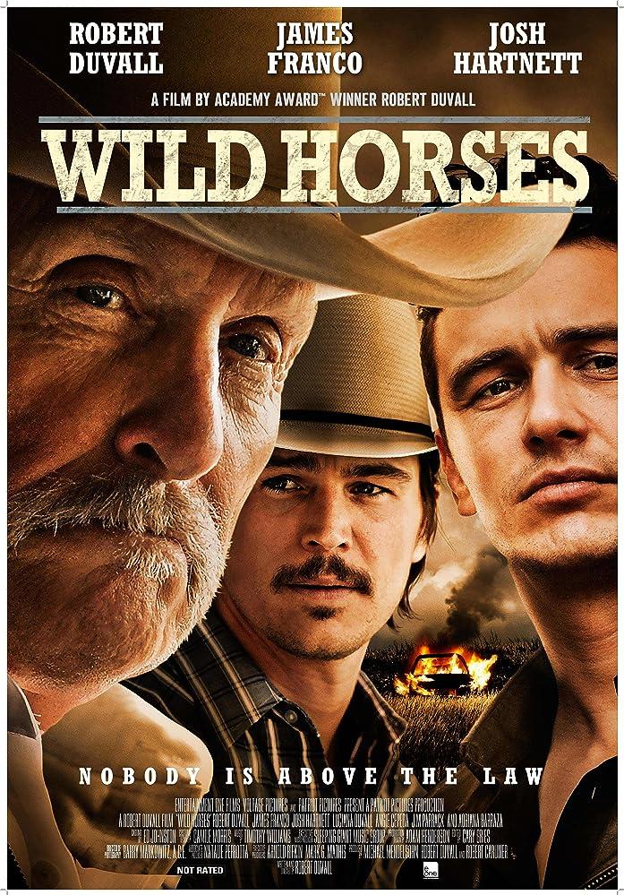 Laukiniai arkliai / Wild Horses (2015)