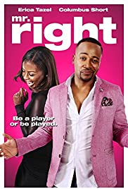 Mr. Right (2015) Poster - Movie Forum, Cast, Reviews