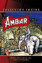 Image of Ámbar