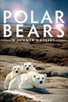 Image of Polar Bears: A Summer Odyssey