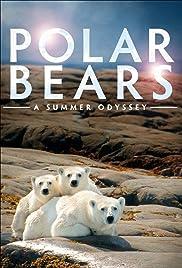 Polar Bears: A Summer Odyssey2012 Poster
