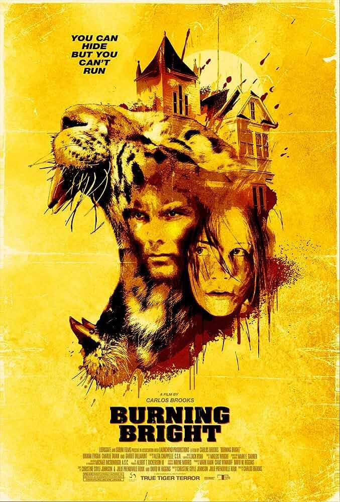 Burning Bright 2010 Hindi Dual Audio 480p BluRay
