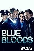Blue Bloods - Crime Scene New York (2010-)