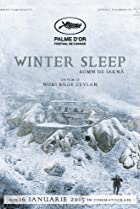 Image of Winter Sleep