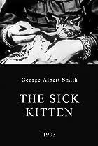 The Sick Kitten (1903) Poster
