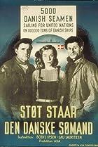 Image of Støt står den danske sømand