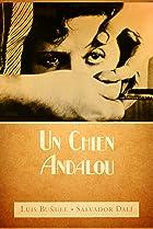 Un Chien Andalou (1929) Poster