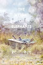 Image of The Weight of Elephants