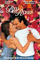 Image of Bed of Roses