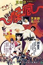 Image of Mad Monkey Kung Fu