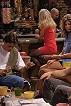 Image of Friends: The One with the East German Laundry Detergent