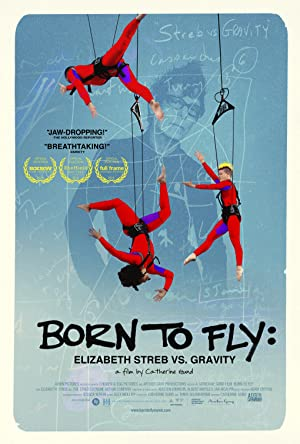 Born to Fly: Elizabeth Streb vs. Gravity (2014)