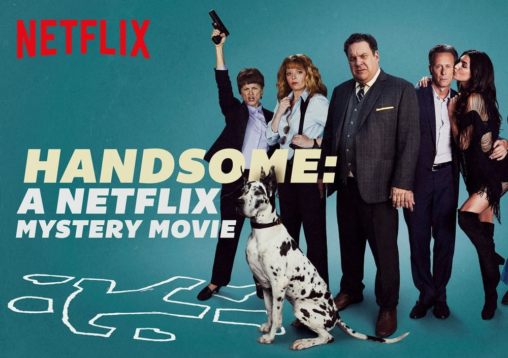 Image result for handsome netflix
