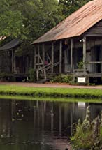 Primary image for Bayou