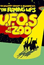 UFOs at the Zoo: The Flaming Lips Live in Oklahoma City
