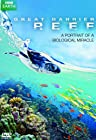 Primary image for Great Barrier Reef