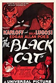The Black Cat (1934) Poster - Movie Forum, Cast, Reviews