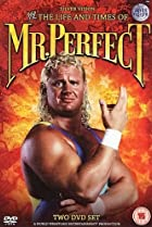 Image of The Life and Times of Mr. Perfect