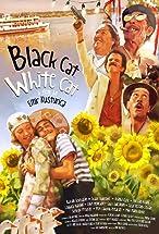 Primary image for Black Cat, White Cat