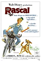 Image of Rascal