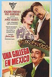 Una gallega en México Poster