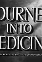 Journey Into Medicine
