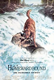Homeward Bound: The Incredible Journey (1993) Poster - Movie Forum, Cast, Reviews