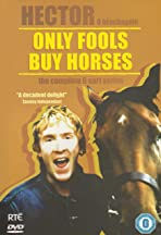 Only Fools Buy Horses