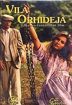 Vila Orhideja
