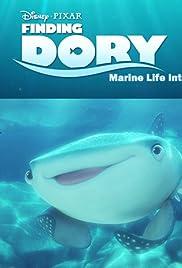 Dory: Marine Life Interviews