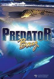 Predator Bay Poster