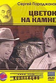 Tsvetok na kamne Poster