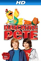 Primary image for Hatching Pete