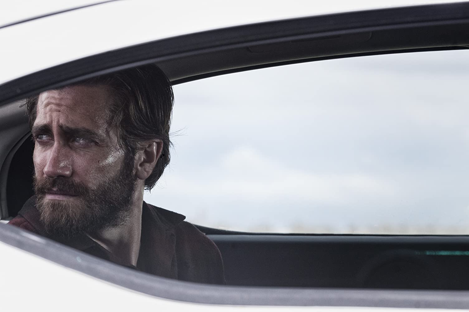 'Nocturnal Animals' (Courtesy: Merrick Morton/Focus Features)