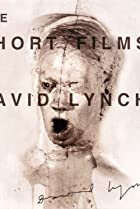 Image of The Short Films of David Lynch