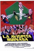 Image of La avispita Ruinasa