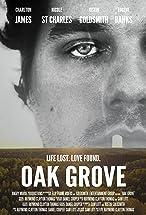 Primary image for Oak Grove