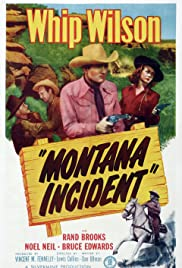 Montana Incident Poster