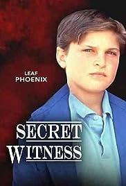 Secret Witness Poster