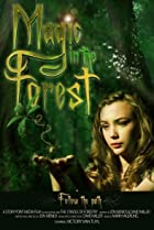 Image of Magic in the Forest