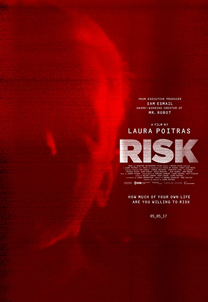 Risk 2016 1080p HEVC BluRay x265 1.3GB