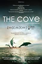 Image of The Cove