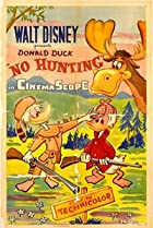 Image of No Hunting