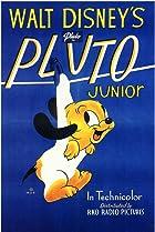 Image of Pluto Junior