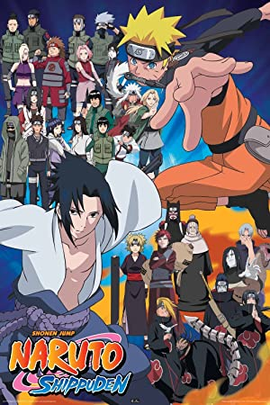 Naruto: Shippûden the series