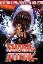 Image of Shark Attack 2