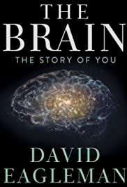 The Brain with Dr. David Eagleman Poster - TV Show Forum, Cast, Reviews
