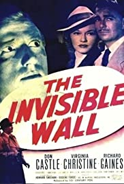 The Invisible Wall Poster