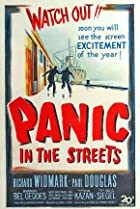 Image of Panic in the Streets